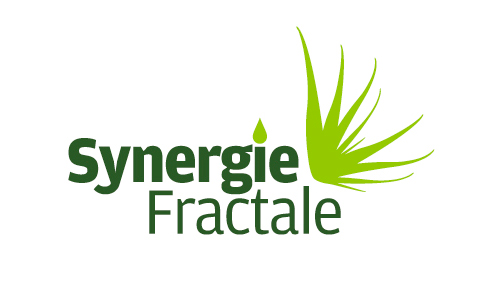 Synergie fractale